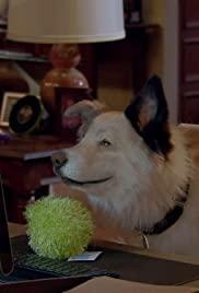 Dog with a blog s3e19